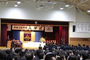 2016 宝仙学園 入学式まで 369_1024