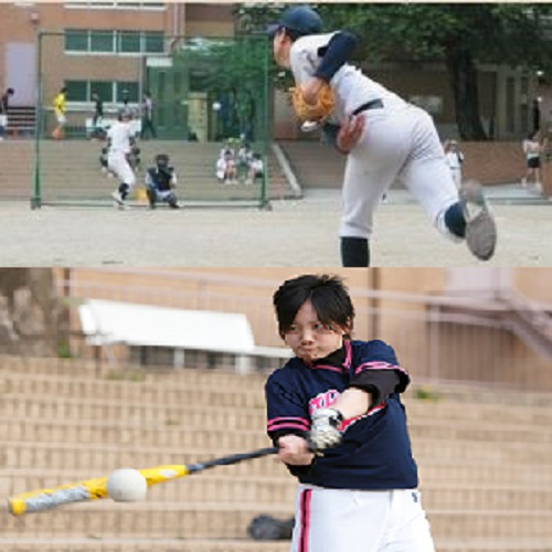 野球/ソフトボール